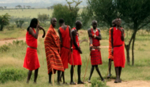 African Safari, Africa Safari Tours and Holidays, Kenya and Tanzania Safaris - Cruzeiro Safaris