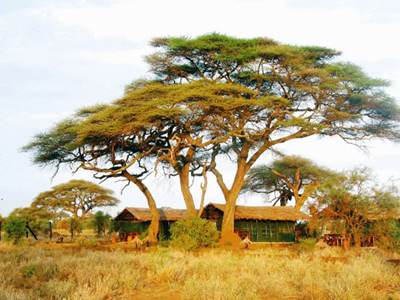 Tsavo Safari from Mombasa, Mombasa Safaris - kobooutside