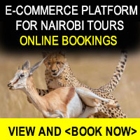 online booking tours, tours and travel  - Travel